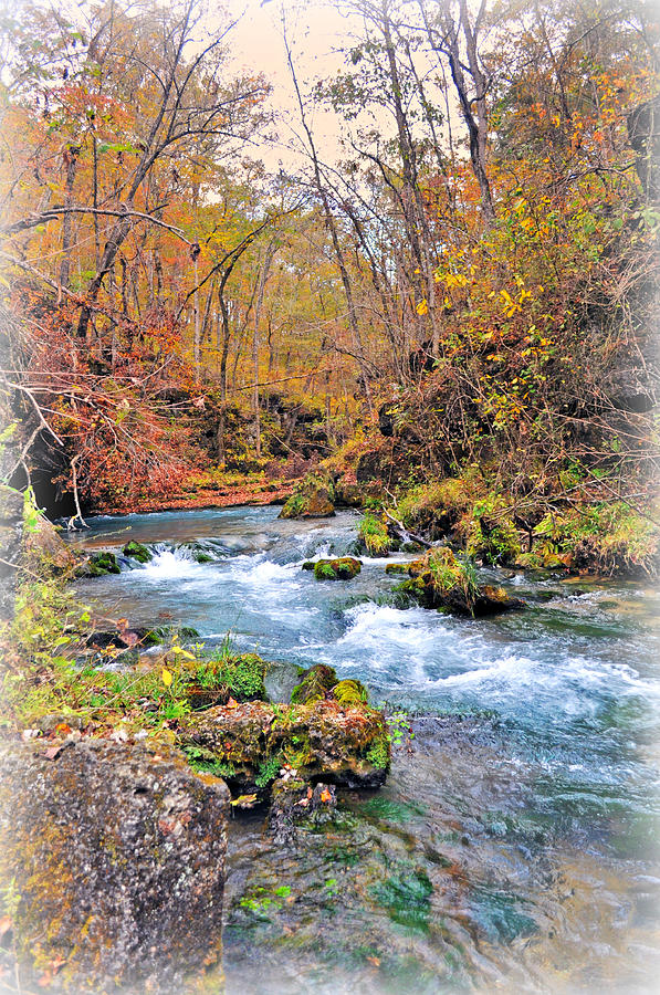 Landscape Photograph - Greer Spring In Fall by Marty Koch
