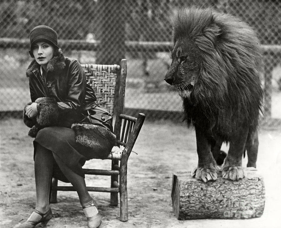 Greta Garbo And Leo The Lion In 1926 Photograph