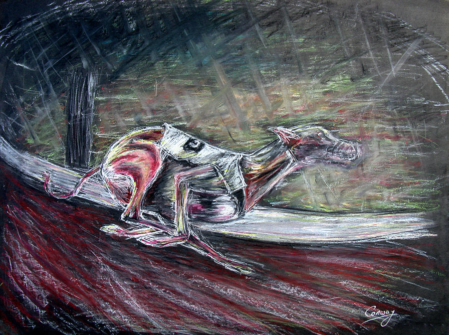 Dog Drawing - Greyhound Number Three by Tom Conway