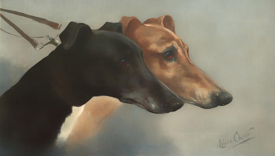 Greyhound Painting - Greyhounds  by Mountain Dreams