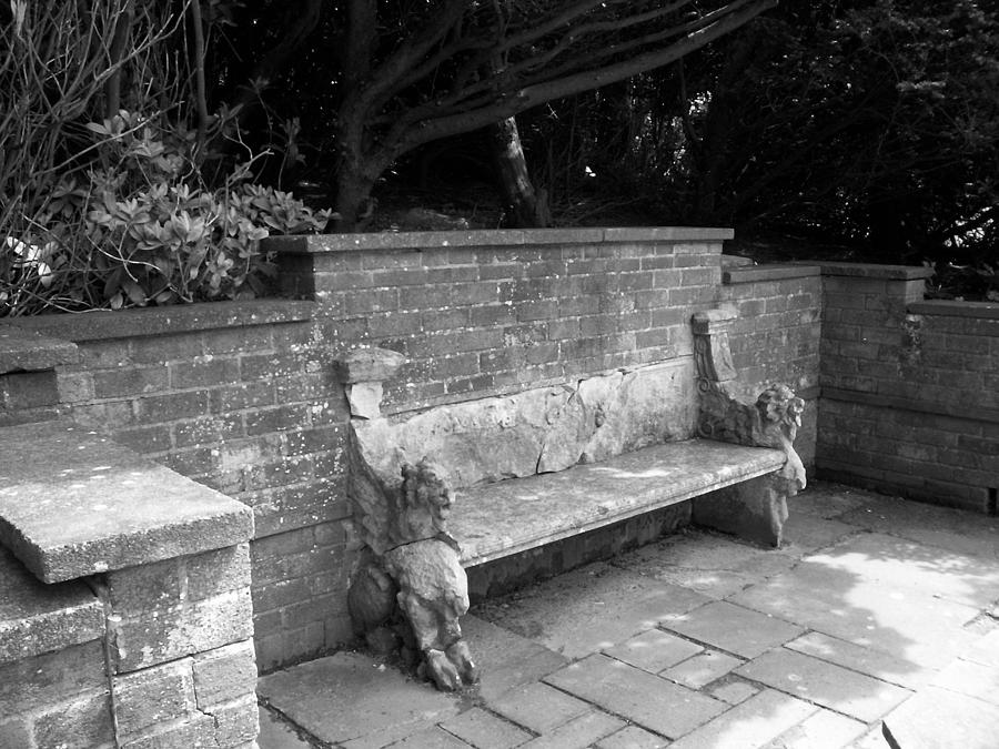 Griffin Photograph - Griffin Bench by Katie Beougher