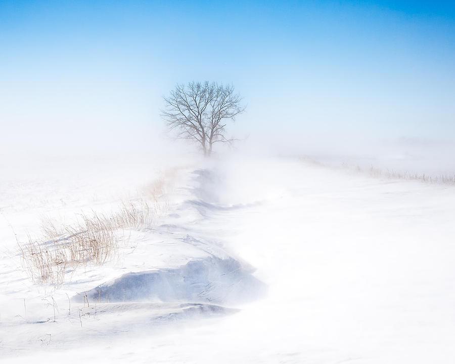 Blue Photograph - Ground Blizzard by David Wynia