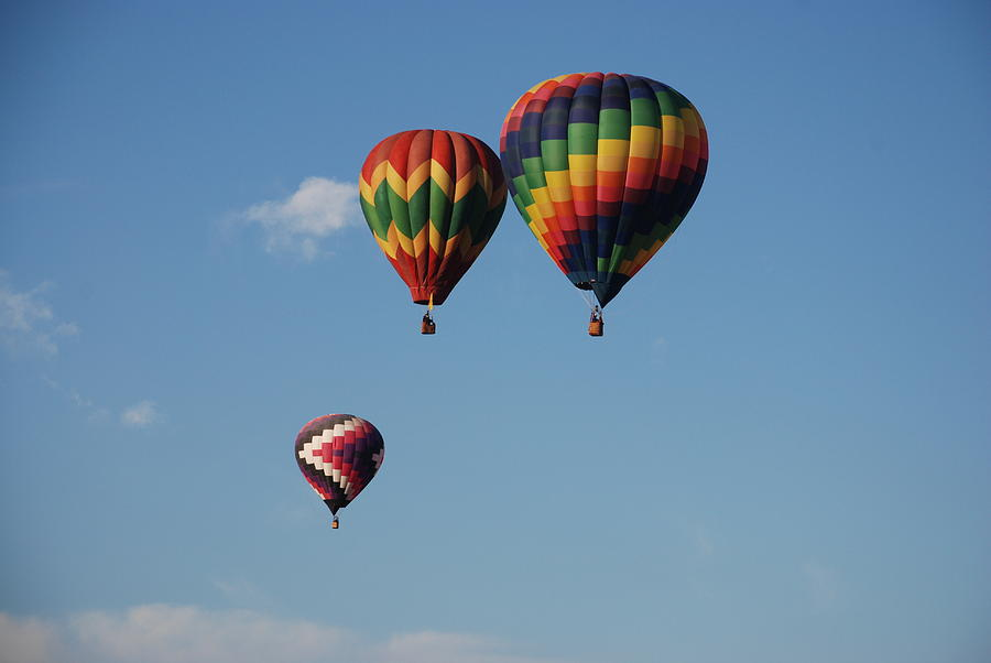 Balloon Fiesta Photograph - Grouped Up by Miguelito B