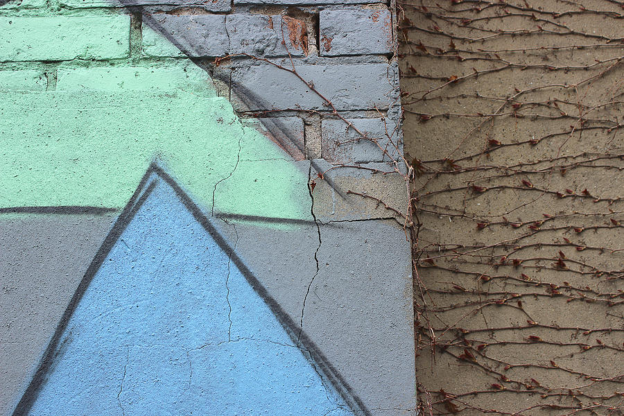 Graffitti Photograph - Growing Across by Natalie Lizza