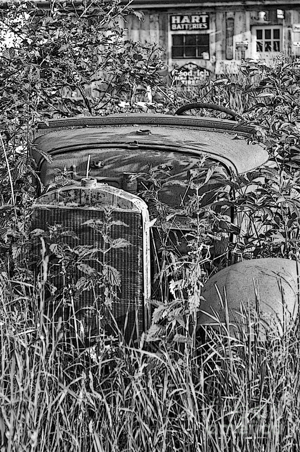 Cars Photograph - Growing Weeds by Randy Harris