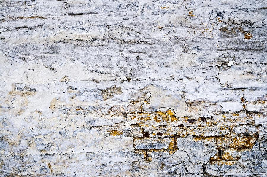 Wall Photograph - Grunge Wall by Elena Elisseeva