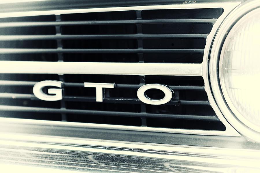 Gto Photograph - GTO by Karol Livote