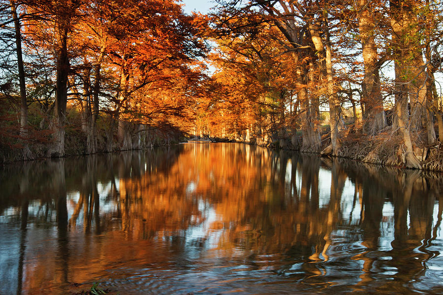 Autumn Photograph - Guadalupe River, Texas Hill Country by Larry Ditto