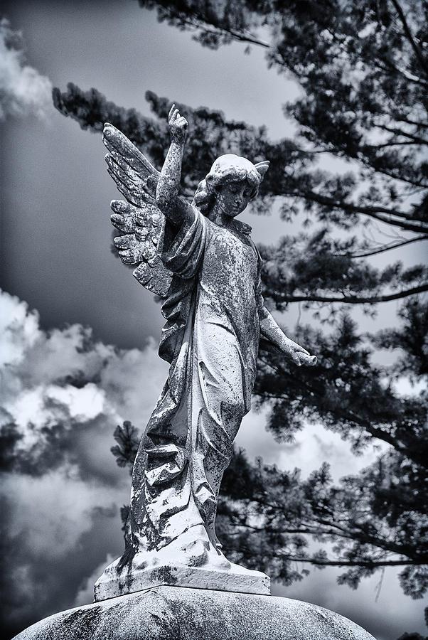 Guardian Angel by Wayne Stacy