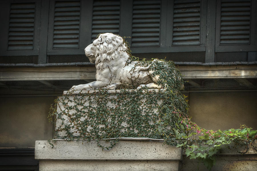 New Orleans Photograph - Guardian by Brenda Bryant