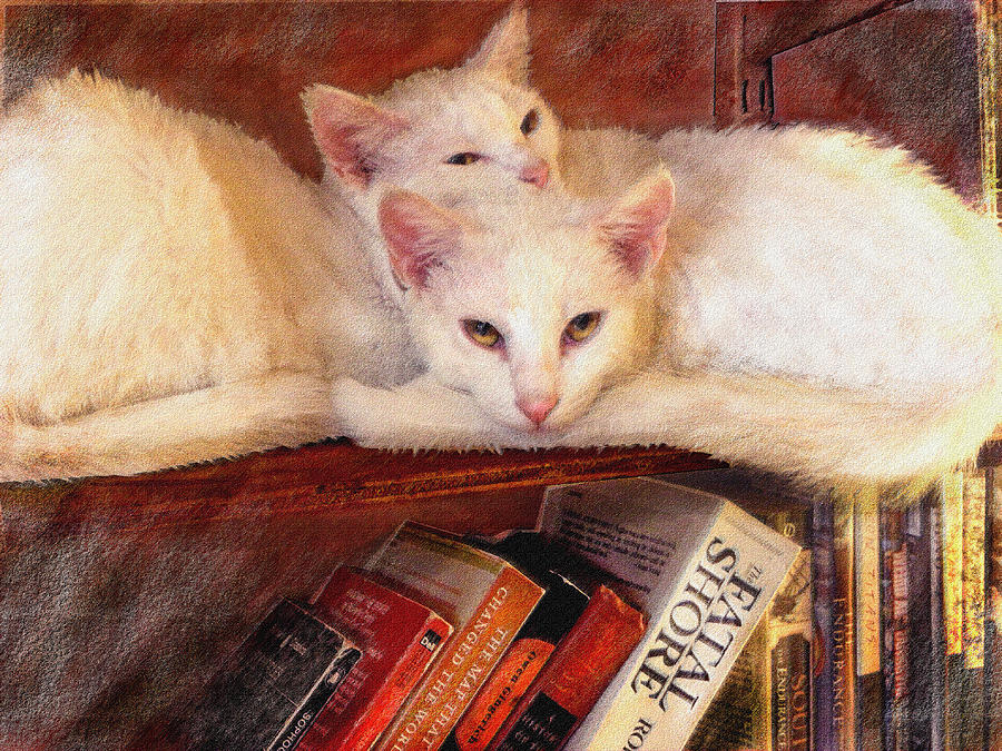 Cat Digital Art - Guardians Of The Library by Jane Schnetlage