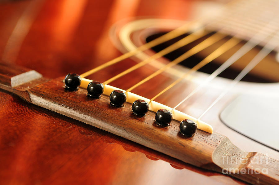 Guitar Photograph - Guitar Bridge by Elena Elisseeva