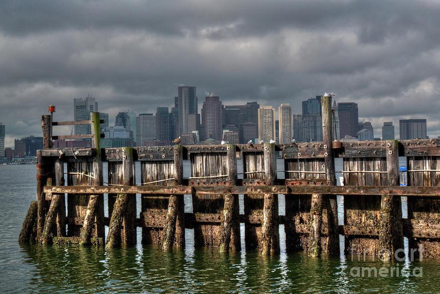 Boston Photograph - Gull Perch by Deborah Smolinske