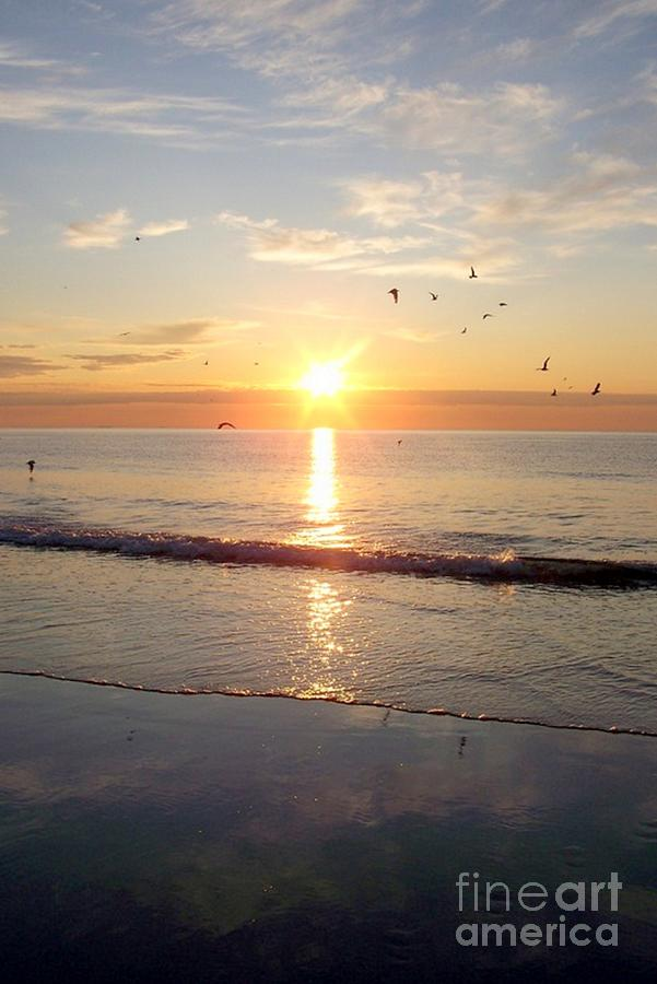 Seascape Photograph - Gulls Dance In The Warmth Of The New Day by Eunice Miller