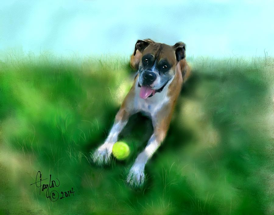 Dogs Painting - Gus The Rescue Dog by Colleen Taylor