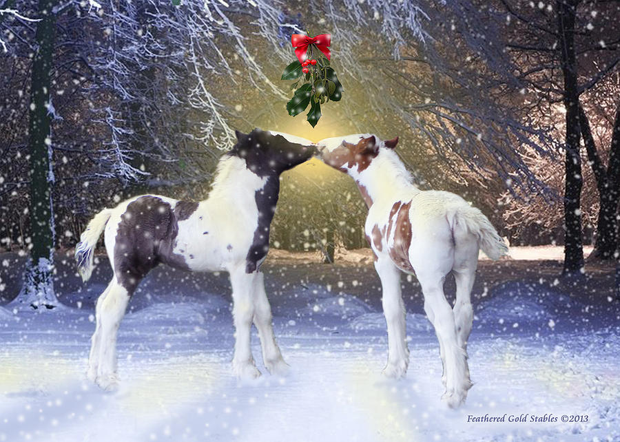 Gypsy Foals And Mistletoe Photograph by Feathered Gold Stables