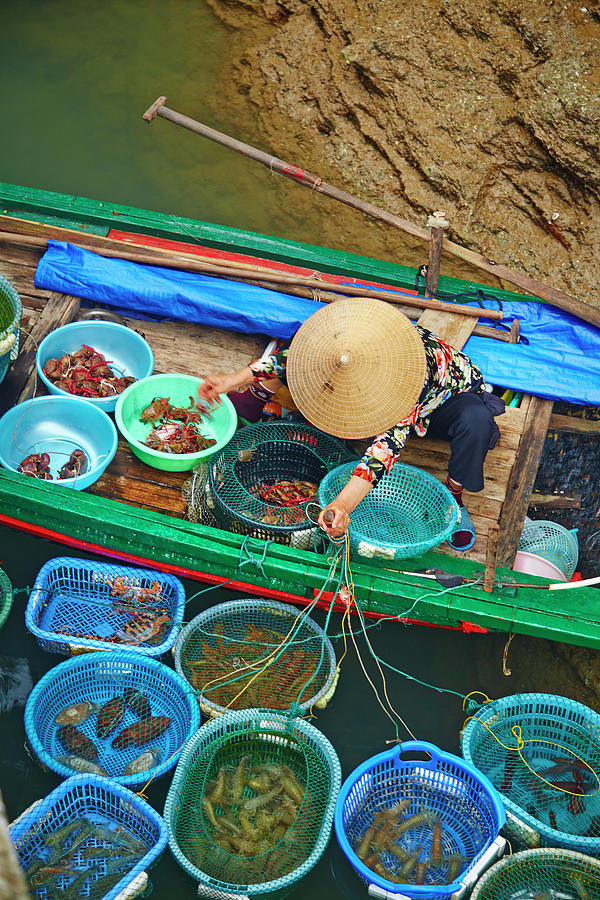 Ha Long Bay Fishing Photograph by Aaron Foster