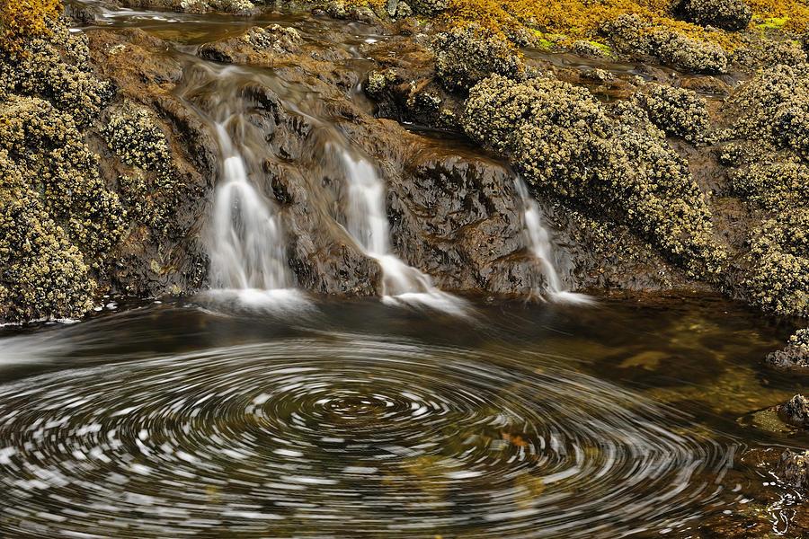 Haida Gwaii Landscape by Don Johnston