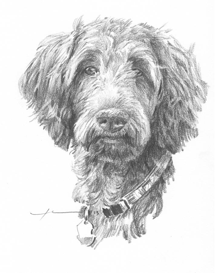 Hairy Dog Pencil Portrait Painting by Mike Theuer