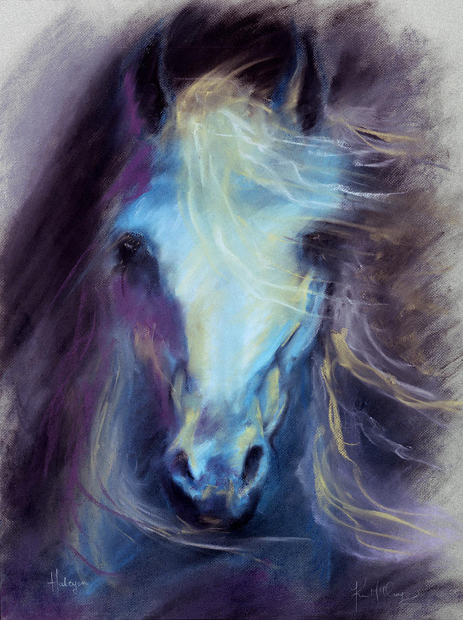 Blue Horse Photograph - Halcyon by Kim McElroy