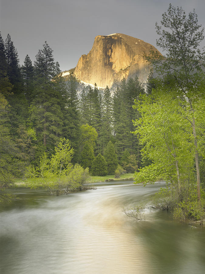 Half Dome Photograph - Half Dome And The Merced River At Sunset by Richard Berry
