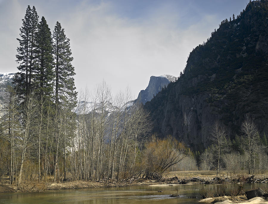 Half Dome Photograph - Half Dome And The Merced River In Winter by Richard Berry