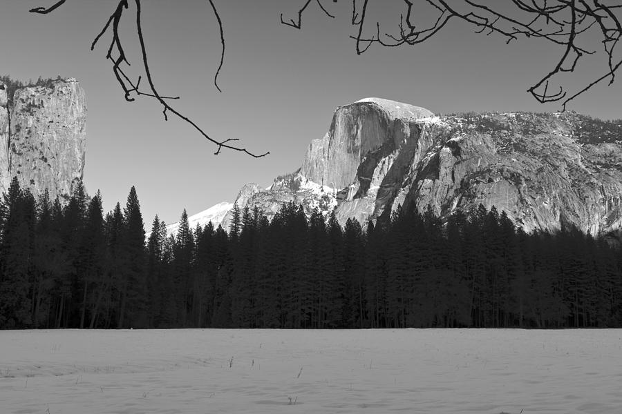 Half Dome Photograph - Half Dome by Mike Herdering