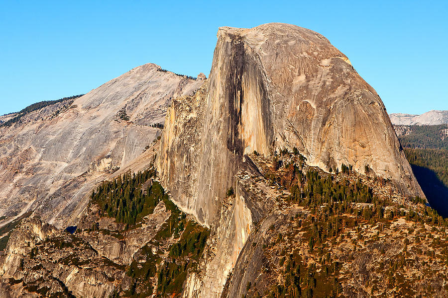 California Photograph - Half Dome by Peter Tellone