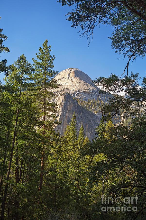 Alpine Photograph - Half Dome Yosemite by Jane Rix