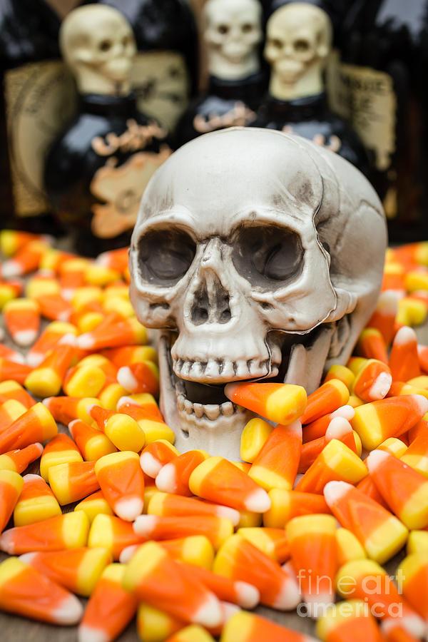 Buffet Photograph - Halloween Candy Corn by Edward Fielding