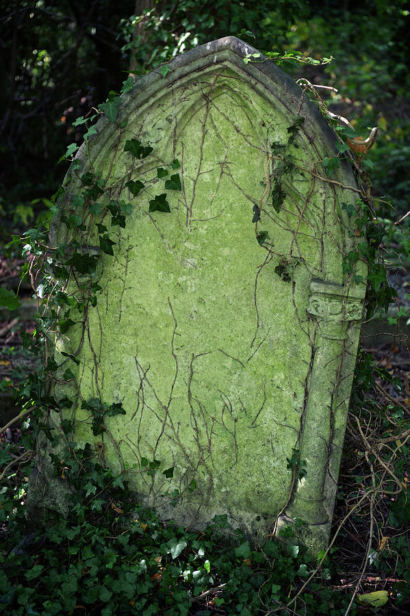 Halloween Tombstone Vine Covered Photograph by Peskymonkey