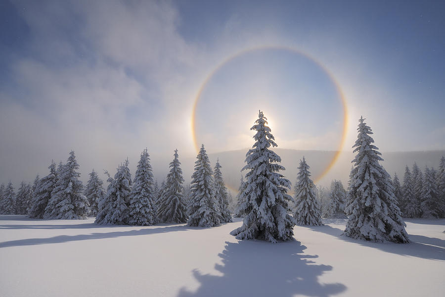 Halo (Icebow or gloriole). Photograph by Martin Ruegner
