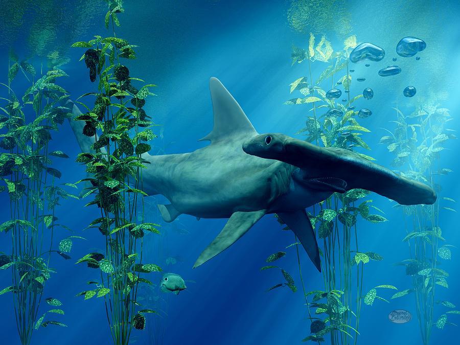 Shark Digital Art - Hammerhead by Daniel Eskridge