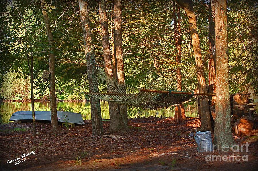 Hammock By The Lake Photograph