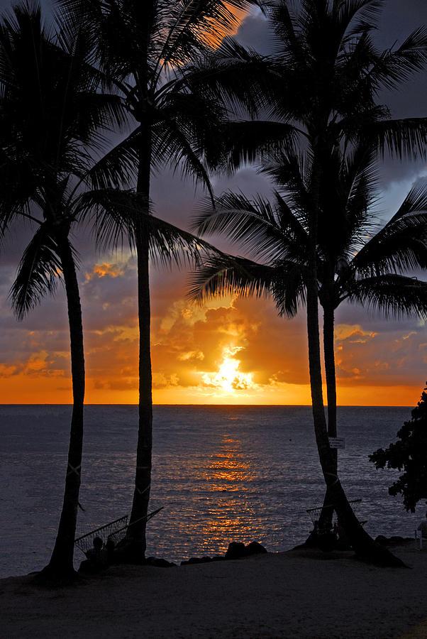 Sunset Photograph - Hammock Sunset by Lynn Bauer