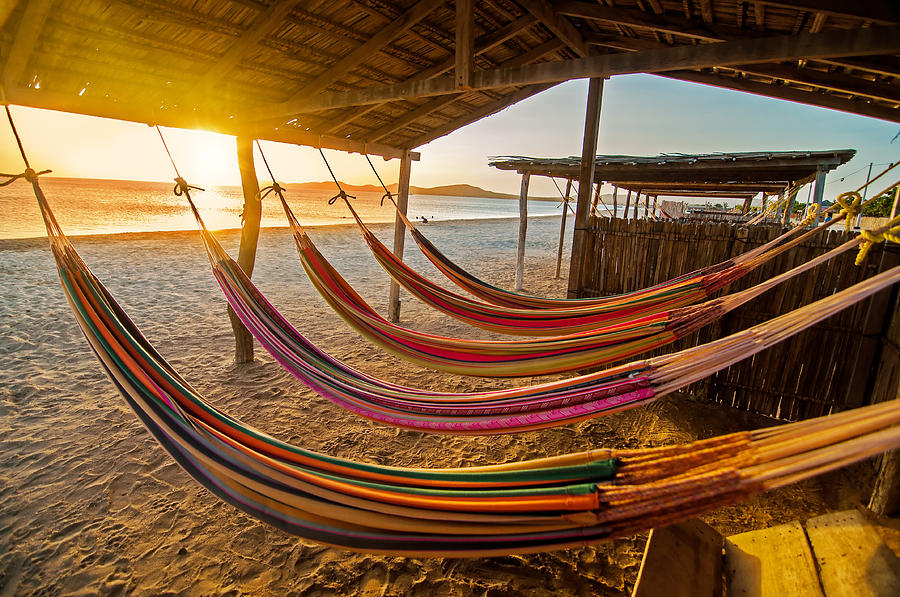 Beach Photograph - Hammocks by Jess Kraft