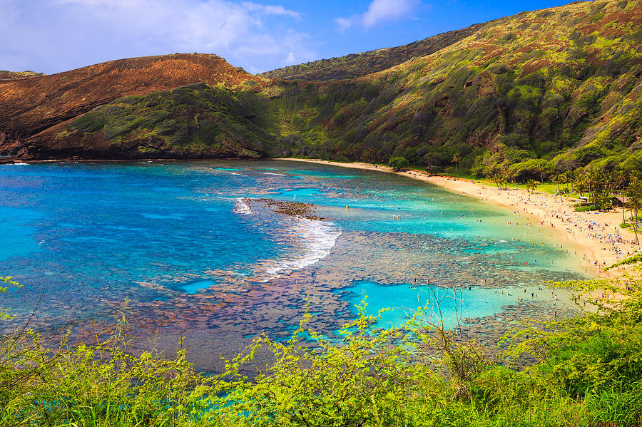 Hanauma Bay in Hawaii by Ami Parikh