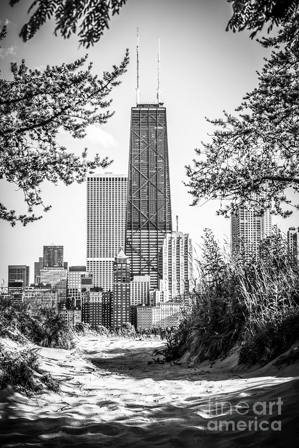 2012 Photograph - Hancock Building Through Trees Black And White Photo by Paul Velgos