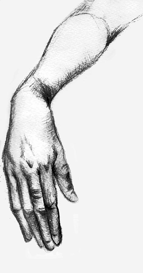 Drawing Drawing - Hand 2 by Alexandra-Emily Kokova