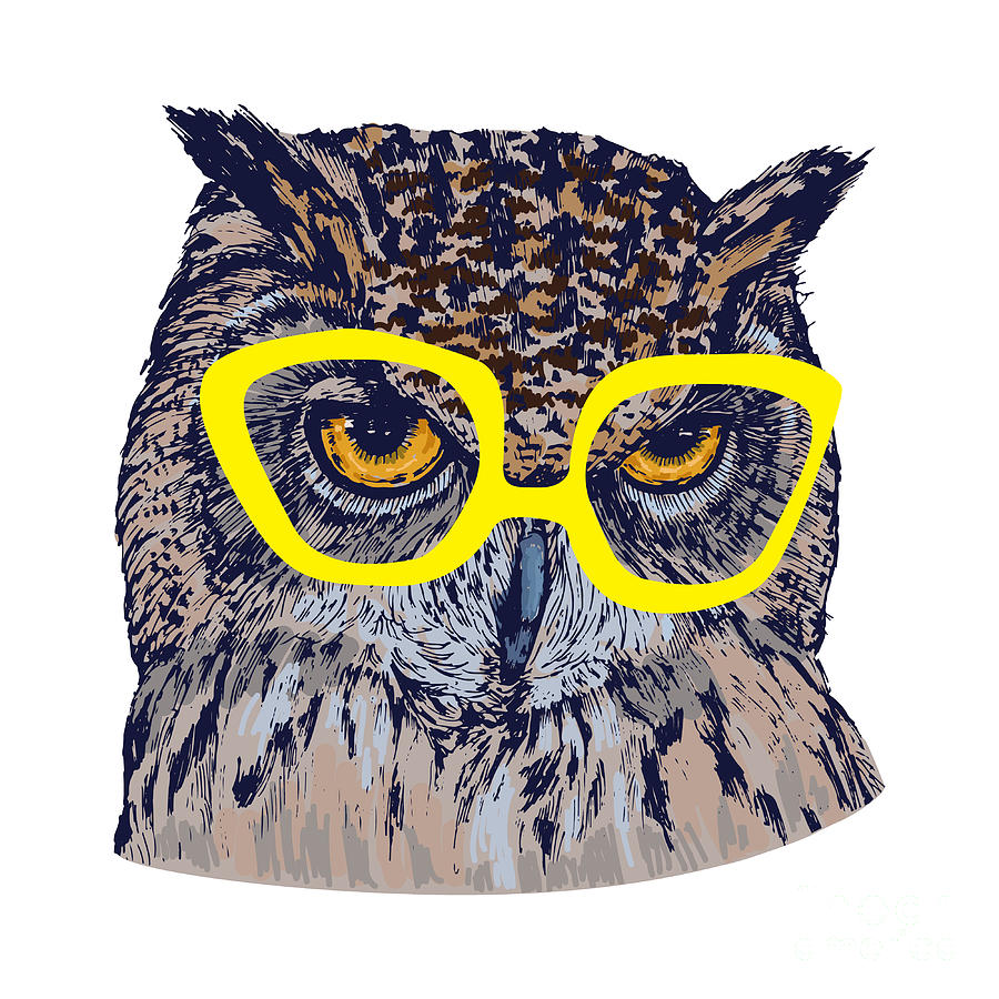 Feather Digital Art - Hand Drawn Owl Face With Yellow by Melek8