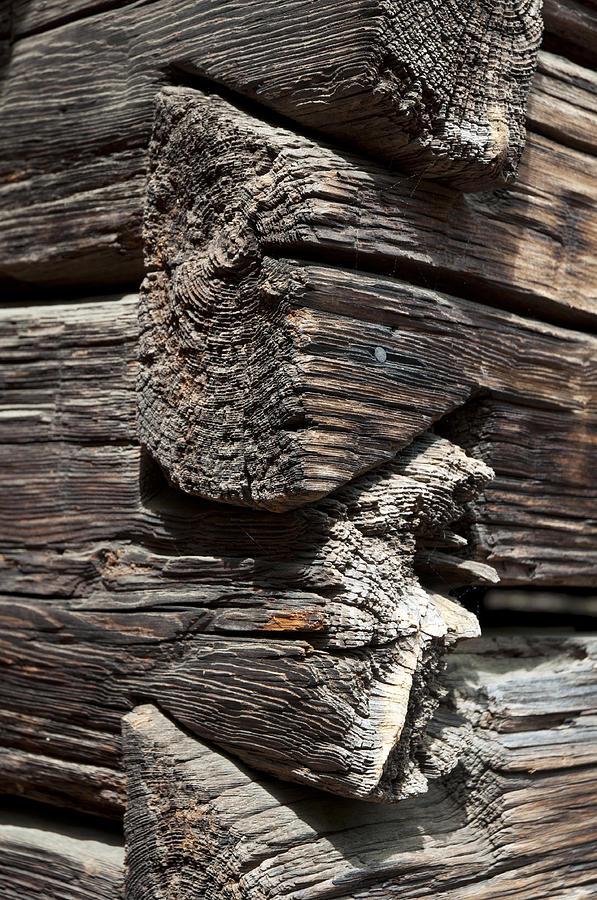 Hand Hued Logs Photograph