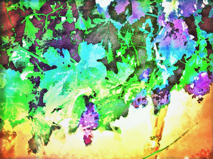 Grapes Digital Art - Hanging Grapes by Cindy Edwards