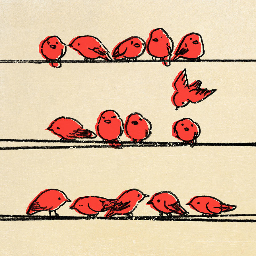 Birds Drawing - Hanging Out by Eric Fan