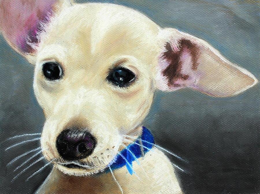Mammal Painting - Hank by Jeanne Fischer