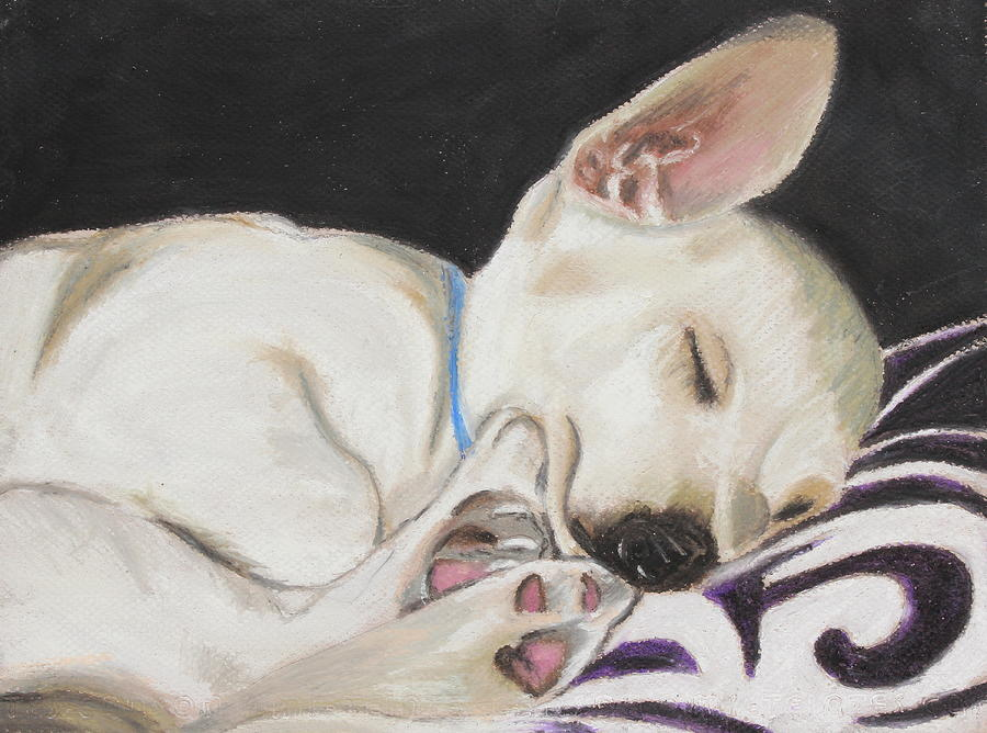 Mammal Painting - Hanks Sleeping by Jeanne Fischer
