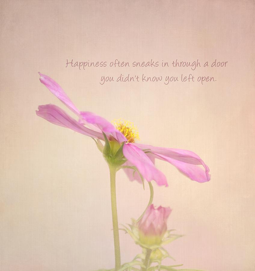 Flower Photograph - Happiness by Kim Hojnacki
