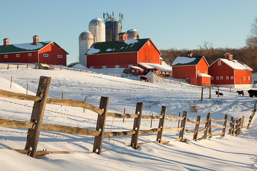 Barnyard Photograph - Happy Acres Farm by Bill Wakeley