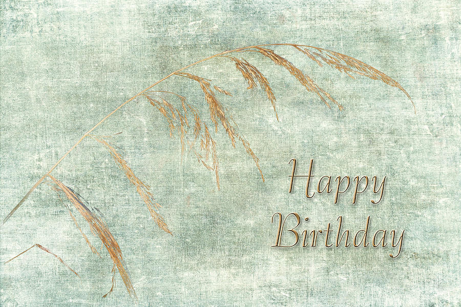 Happy Birthday Greeting Card Wild Grass Photograph By Mother Nature
