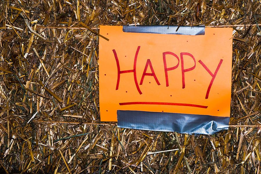 Happy by Christie Kowalski
