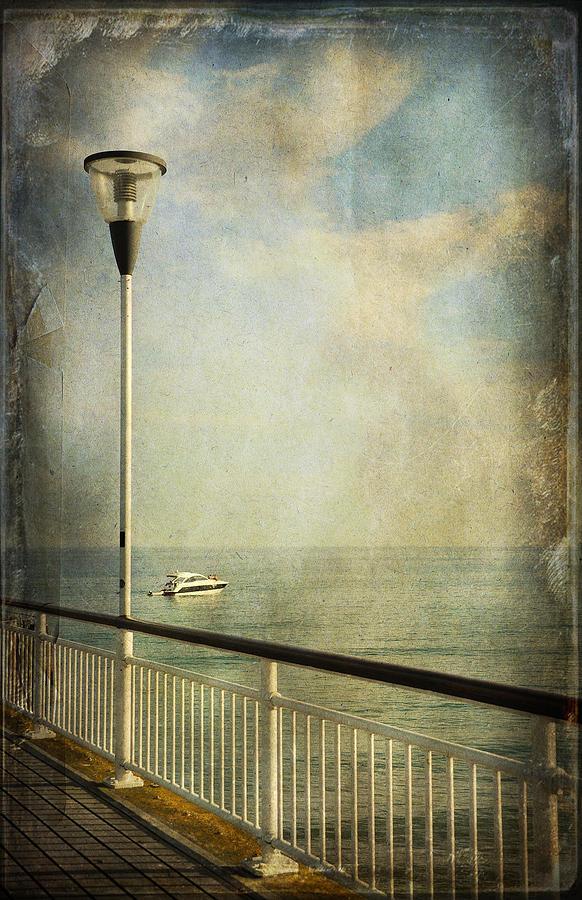 Bay Photograph - Happy Day by Svetlana Sewell